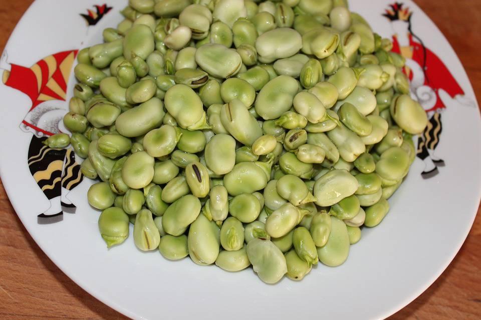Foods to Help Avoid Dementia
