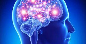 6 things for better brain health