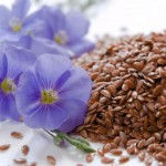 Flax Seed Health Benefits and Side Effects