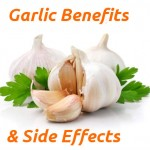 Garlic Health Benefits & Side Effects
