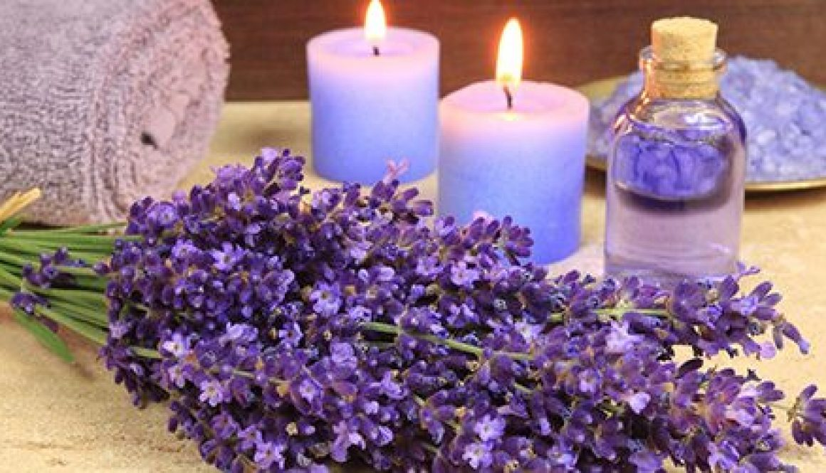 Lavender oil uses, benefits and side effects