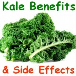What is Kale, Its Health Benefits and Side Effects