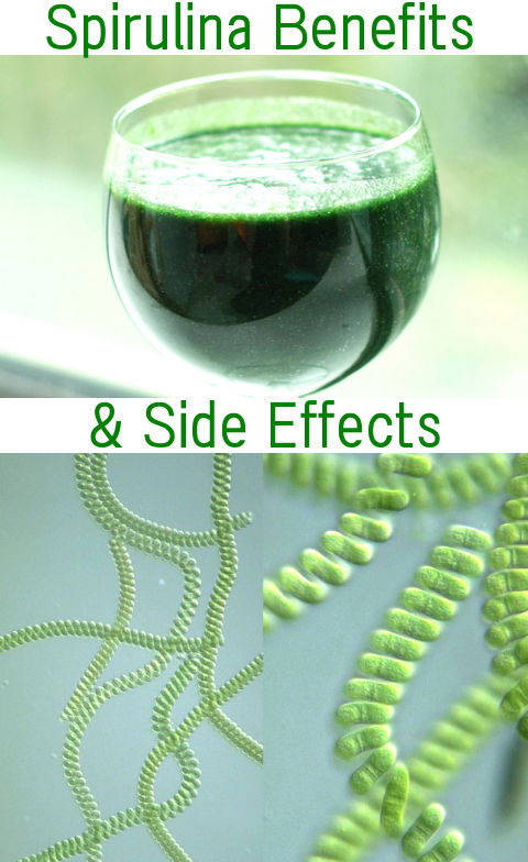 What Is Spirulina Health Benefits And Side Effects
